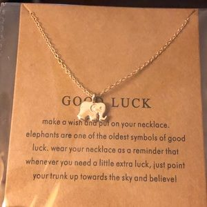 Jewelry - Good Luck Necklace